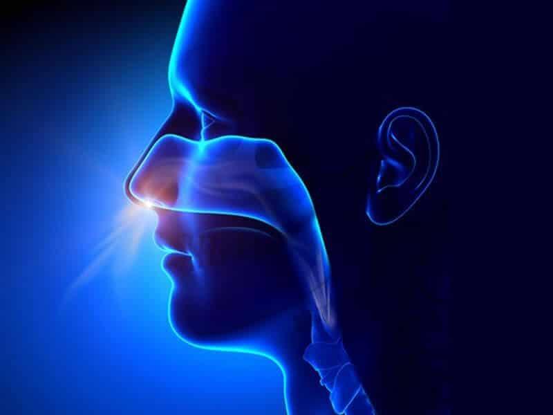 Movimientos respiratorios: inspiración
