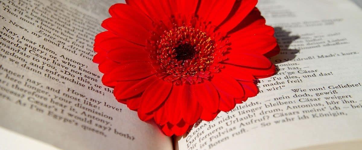 Declamación, declamar, poesía