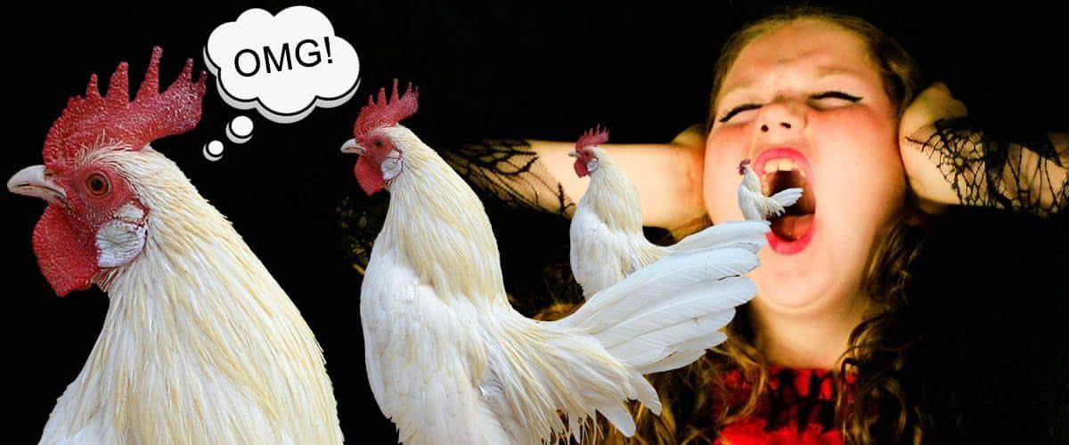 Gallos en la emisión de la voz
